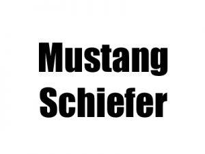 Mustang Schiefer Fliesen